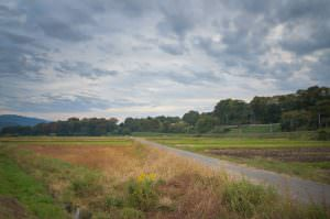 秋に色づいた辰野町の田園風景です。