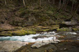 国の天然記念物に指定されている横川の「蛇石」。